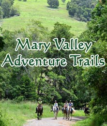 Mary Valley Adventure Trails offer unique horse riding adventures in South East Queeensland.