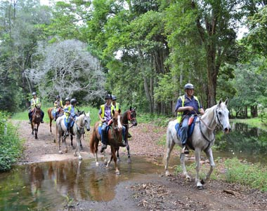Horse Riding Australia - guided horse riding adventures through the scenic Mary Valley in Sunshine Coast/Noosa Hinterland.