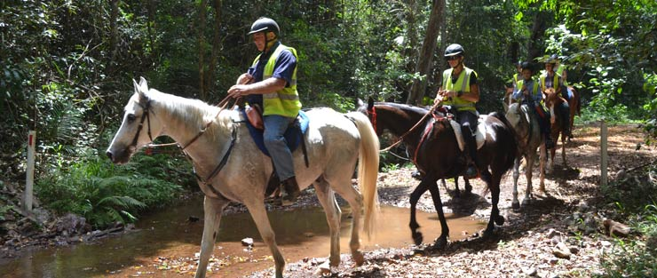 Horse riding in the Mary Valley.