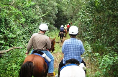 Mary Valley Adventure Trails - guided horse riding tours in Australia.