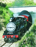 The Mary Valley Rattler steam train tours in the scenic Mary Valley, South East Queeensland.