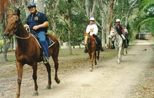 Join Graham Ellison on guided horse riding adventures through the scenic Mary Valley in Sunshine Coast/Noosa Hinterland.